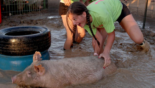"The ""Pig Tales"" work to get their pig in the hole during hog wrestling at the 2013 Delaware County 4-H Fair."