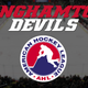 Binghamton Devils 2019-20 American Hockey League schedule