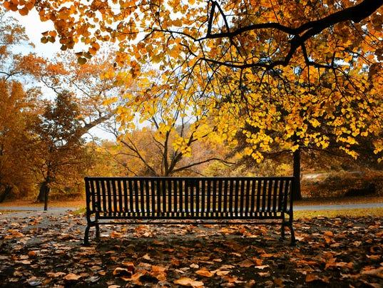News: Bench