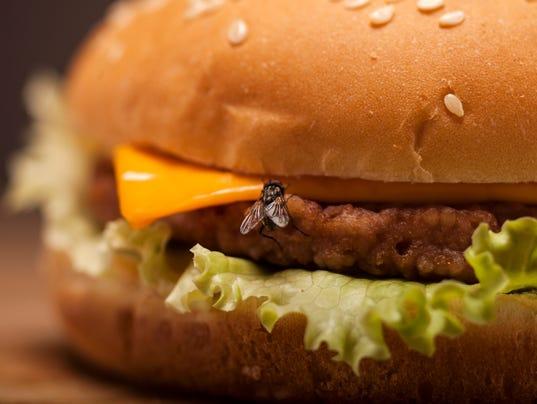 A cheeseburger and flies please