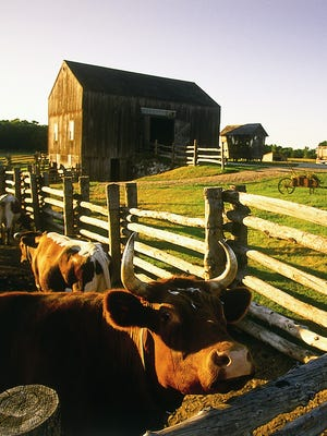 Artists are invited to submit proposals for permanent art to be placed as part of the renovation and expansion of Oliver Kelley Farm in Elk River.