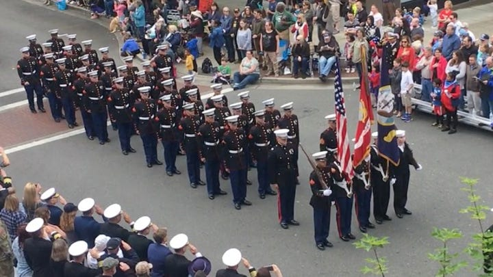Armed Forces Day Parade Highlights