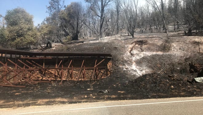 The Carr Fire burned grass, brush and trees on the side of Trinity Mountain Road.