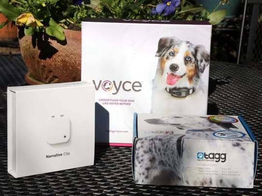 Three pet tech devices, from left: the Narrative Clip, a wearable camera; Voyce, a device that tracks a pet's activity level; and Tagg, a pet-tracking device.