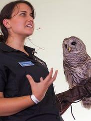 Wildlife Center of Virginia's Raina Krasner shows Athena,