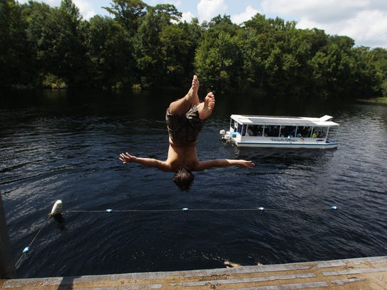 Diving off the observation deck at Wakulla Springs