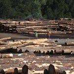 Timber, forest jobs go high-tech
