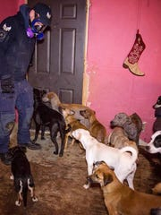 Animal Rescue Corps teams assisted in a rescue in Counce,