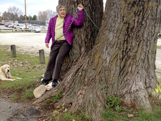 Ann Taylor chained herself to a tree near the Burlington