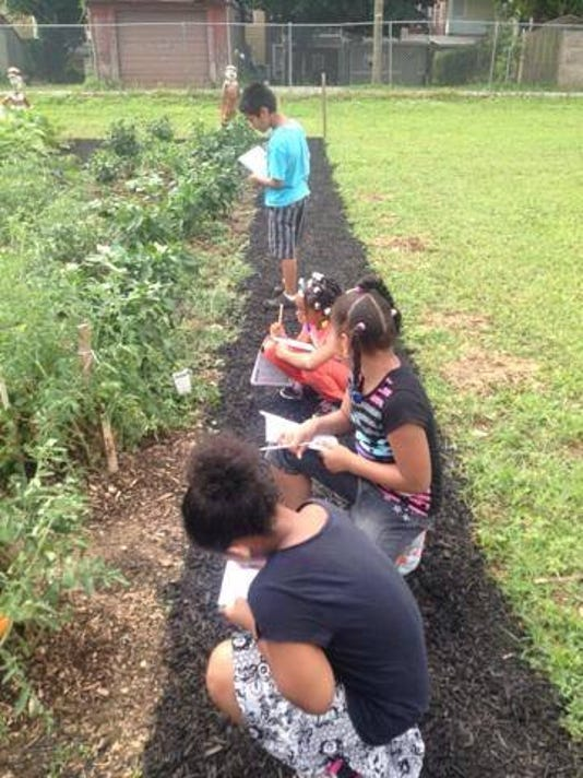 Students learn at the Hope Street Garden & Learning Lab in York. Lincoln Charter School was chosen by the Highmark Foundation to receive a $2,500 grant to support and expand its efforts to prevent childhood obesity. (Submitted)