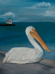 Pelican by Judy Delaine