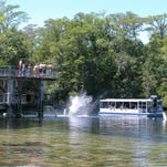 Make a splash at Wakulla Springs when all else fails. The water is so cold it will steal your breath.