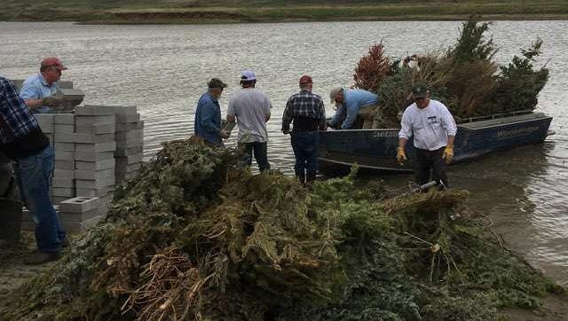Volunteers from Walleyes Unlimited and FWP accomplished the Christmas Tree Project at Tiber Reservoir on May 9.