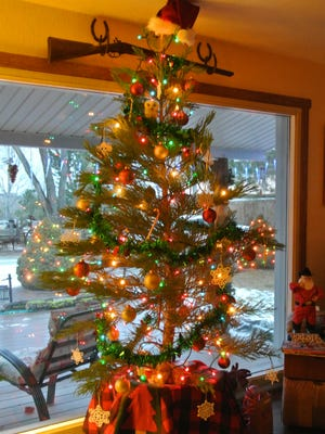 A living Christmas tree can add to the holiday spirit this year, and to your landscape for years to come.