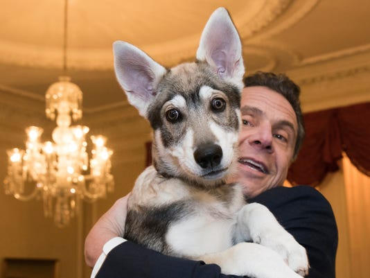 Cuomo and friend