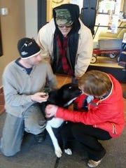 Alaskan husky Decoy, who was seized and held by Door