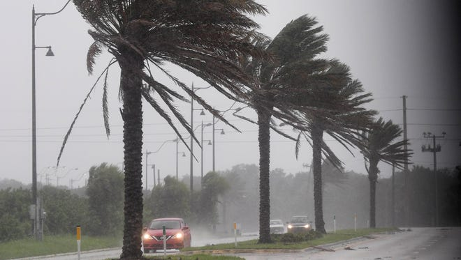 Cars drive down U.S. 1 in Palm Bay as winds from Hurricane Irma batter the trees.