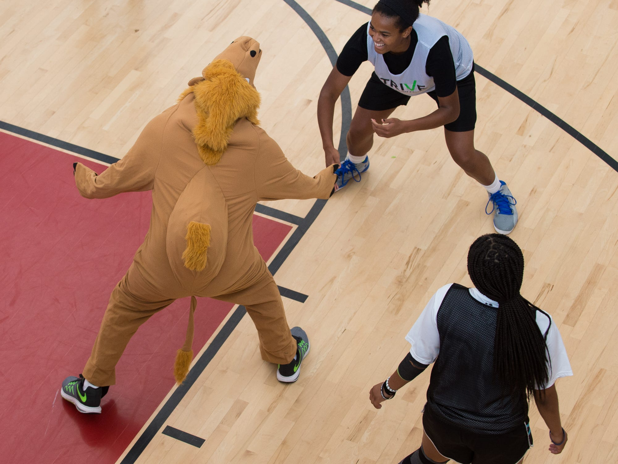 Jeremy Edwards, co-founder of Strive, plays basketball dressed as camel at St. Andrew's School in Middletown, Del,.