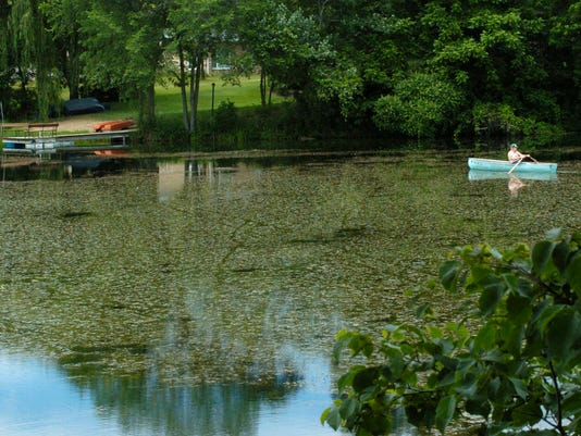 Springville Pond.jpg