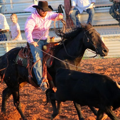 A cowboy ropes a steer by the horns Thursday night