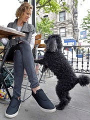 "Marni Turner, and her 10-year-old poodle ""Dougie"" visit"