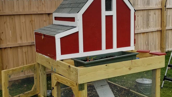 Patrick Miller and his family constructed what they call the Quarantine Chicken Coop at their home in western Erie County.