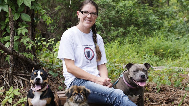 Palm Bay dog trainer Kim Kaleta specializes in pit bulls. She is seen here with Alice, Chilli Willie and Phoebe.