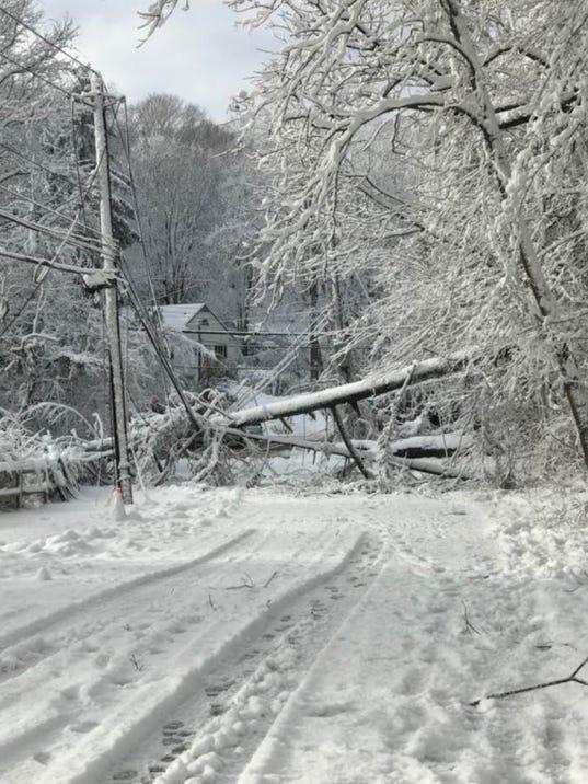 636561335092824097-chappaqua-tree-down.jpg