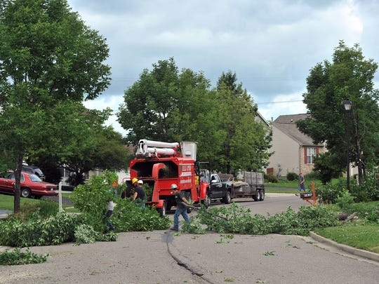 Mid Ohio Tree Service employees move branches from ash trees to a chipper as they clear Tecumseh Drive of the species of trees Tuesday in Lancaster. The tree elimination is part of the city's effort to curb the effect of the emerald ash borer.