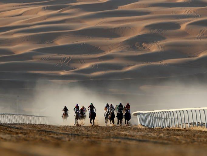 Horses and jockeys race during the Liwa Sports Festival
