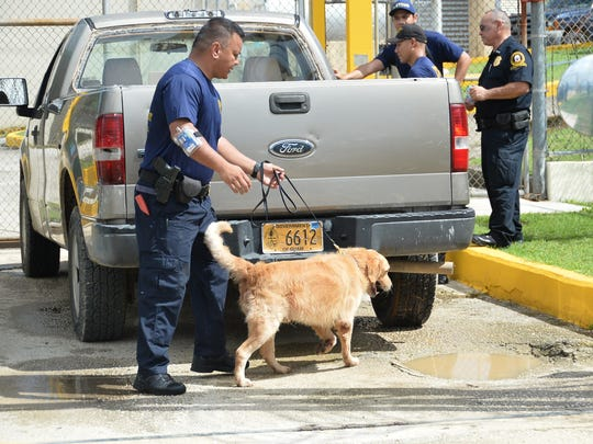 Guam Customs and Quarantine's K-9 Drug Detector Unit checked vehicles going into Department of Corrections Mangilao facility for illegal substances on Sept. 25, 2017. The screening is part of DOC's effort to keep contraband from getting into the prison.