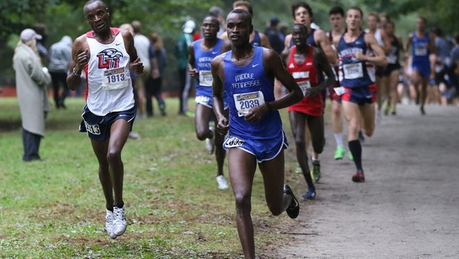 The Blue Raiders cross country team is ranked for the first time in school history.