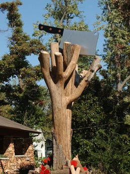 Answer Man: I recently tried to show my boyfriend the tree with the hatchet in it. But it was gone! What happened?