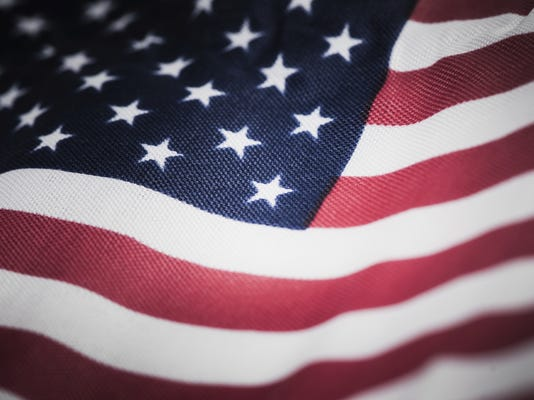 flag vet.jpg