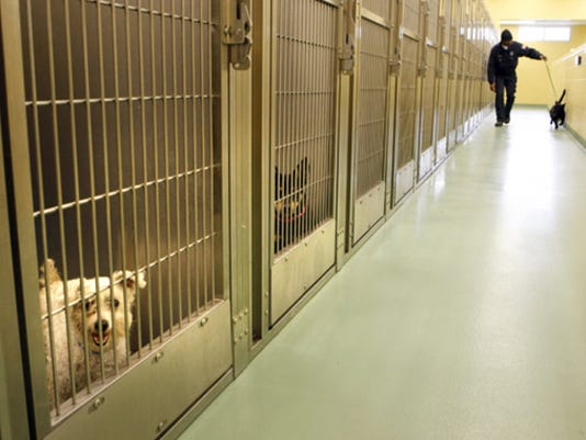 0519_malo_animal_shelter_01_6952226_ver1.0_640_480.jpg