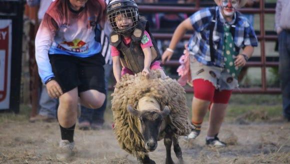 Sheep riding at the Augusta County Fair.