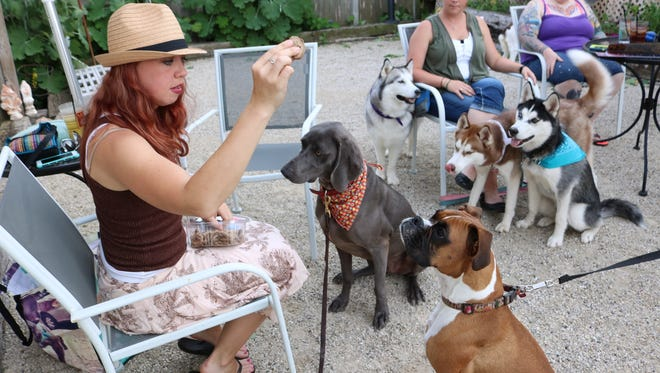 Rebekah Hintzman, left, gets the doggy guests' attention with a treat at Yappy Hour at MoJo in Sheboygan on July 6. She established the event to give owners and dogs the opportunity to socialize.