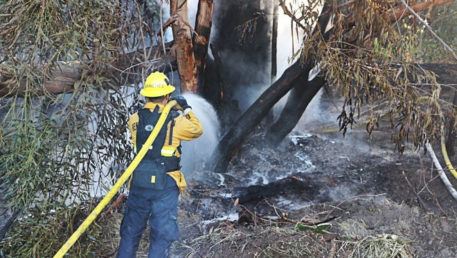 Crews put out a spot fire in a eucalyptus grove Thursday near Santa Paula ahead of fire weather danger expected over the weekend.