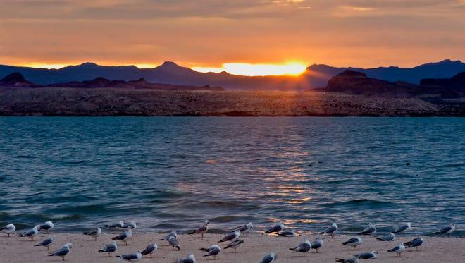 Sunset at the beach at Lake Havasu State Park.