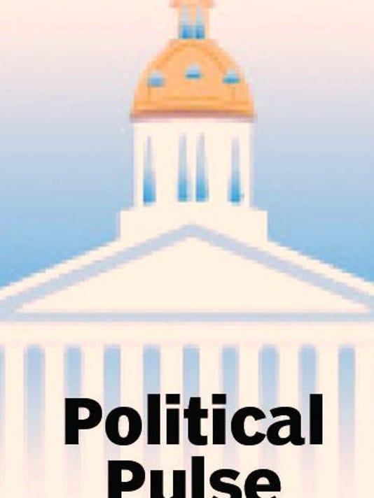political+pulse2.JPG