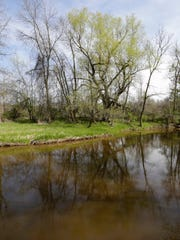 The Pigeon River reflects the trees at the  Ellwood H. May Environmental Park.