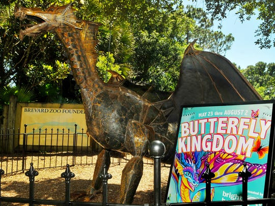 The Staff at the Brevard Zoo get ready for Butterfly Kingdom May 23rd to August 2 .with dragons scattered around the Zoo.