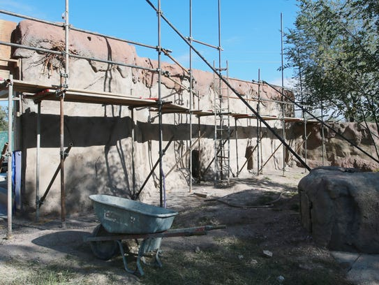 The Red River hog exhibit is under construction at