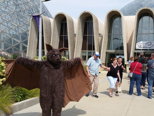 A person in a bat costume greets people at the Bat Festival at the Mitchell Park Horticultural Conservatory on Saturday.