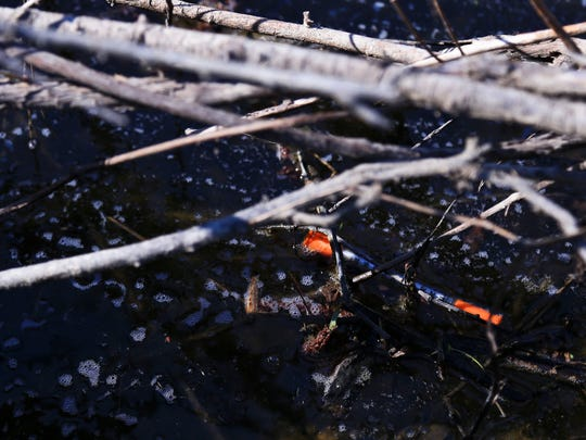 A used needle floats in a drainage ditch near Mann Avenue in Austin. Some residents say they still find used needles and syringes in yards, thrown away by addicts.