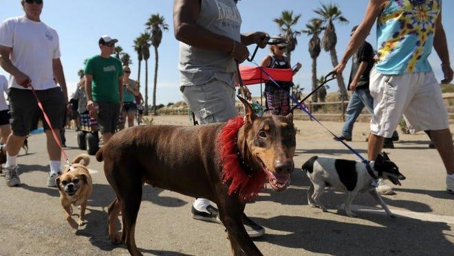 The 20th annual Pooch Parade happens Saturday in Ventura.