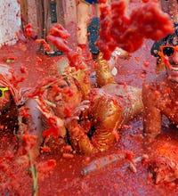 Spain's Tomatina tomato fight 2014