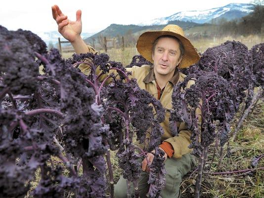 636276993842031999-SALBrd-03-06-2015-Statesman-1-A008--2015-03-05-IMG-SAL-GMO-crops-0306-1-1-UDA4B2EJ-L575091291-IMG-SAL-GMO-crops-0306-1-1-UDA4B2EJ.jpg