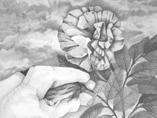 Kalendarium Hortense, pinch.jpg