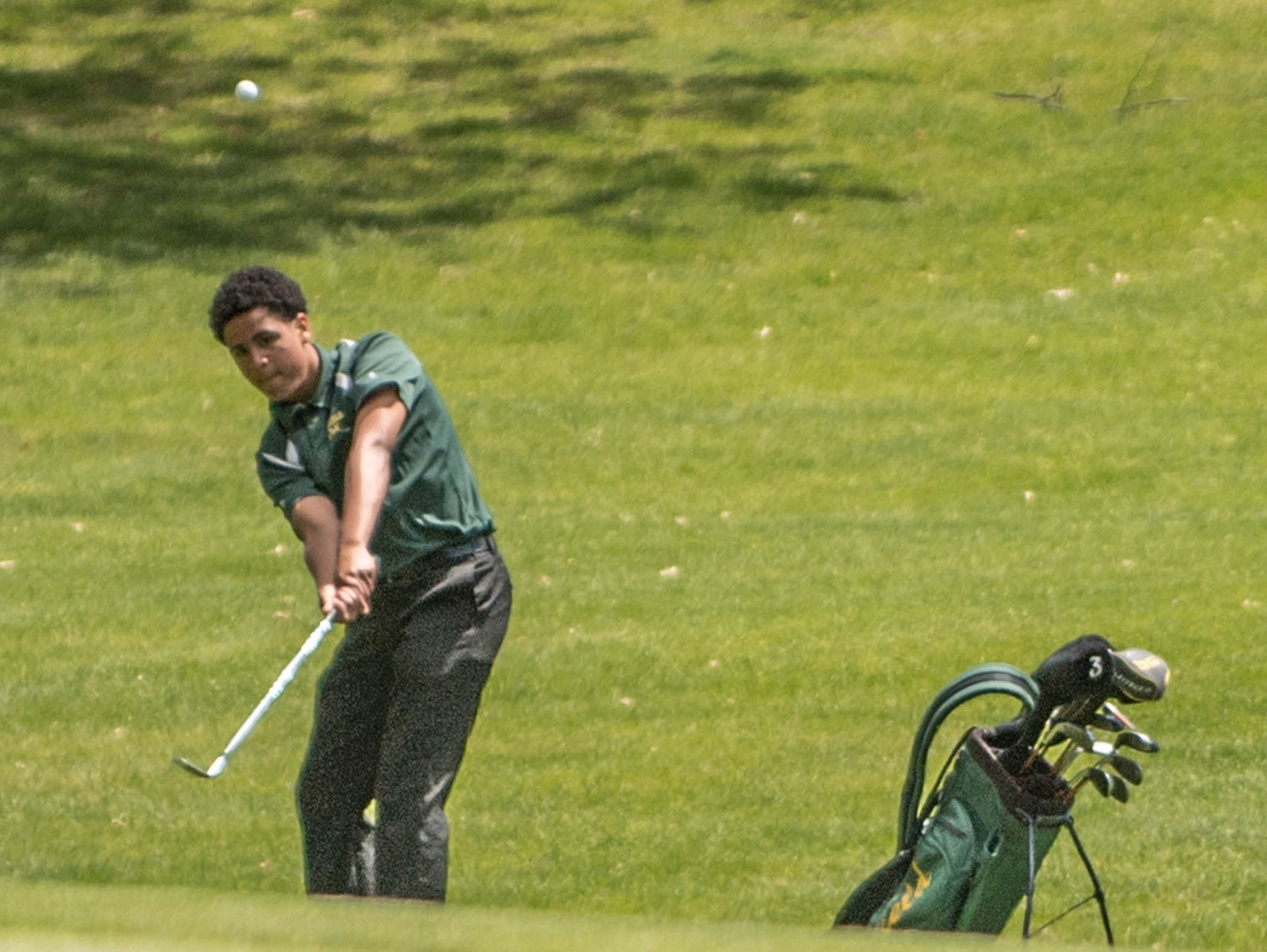 Pennfield sophmore Jaydon Butson chips to the green during All-City Golf Tournament at Riverside Golf Club on Friday.